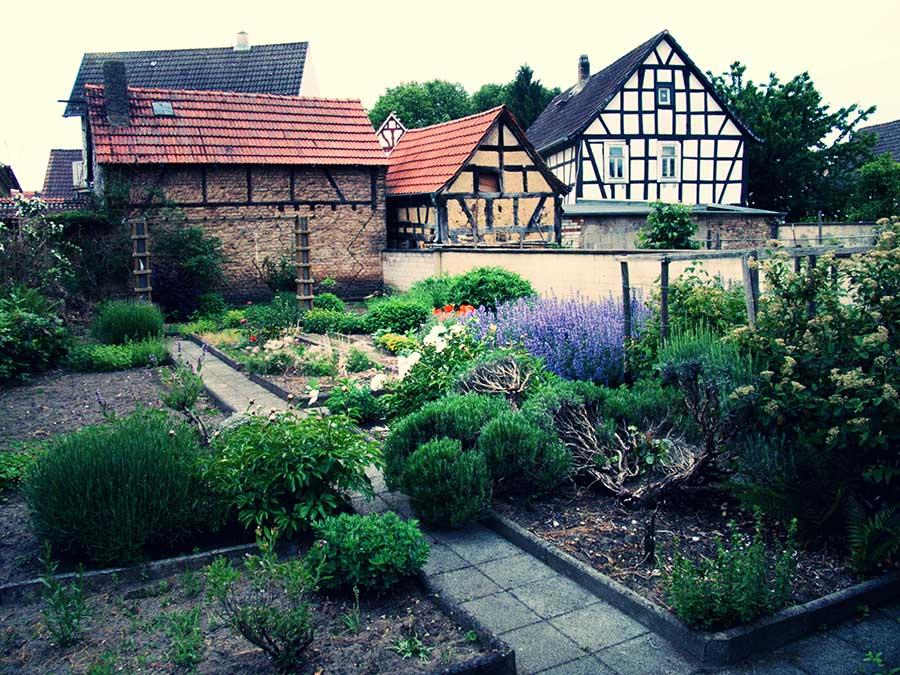 Im Garten von Imker Jochen Riedl im Herzen von Nauheim