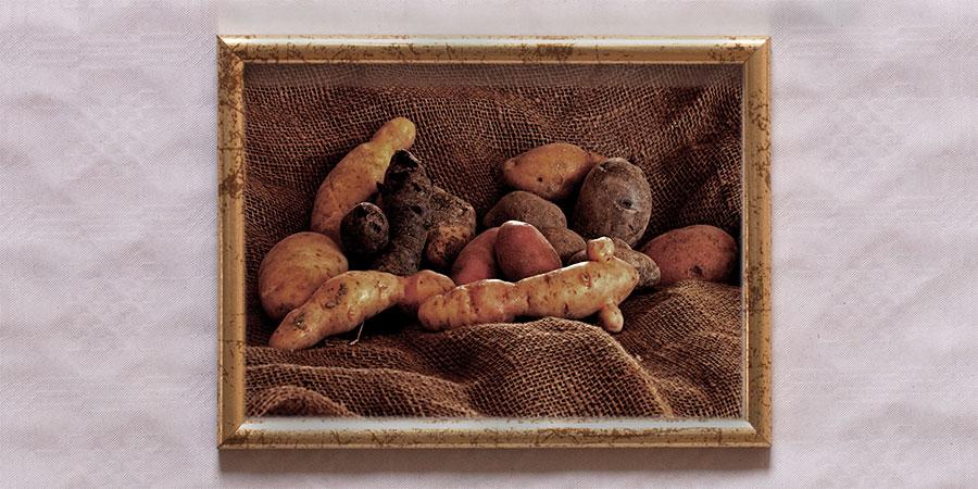 EG_Kartoffeln_Rahmen_Artikelbild_web