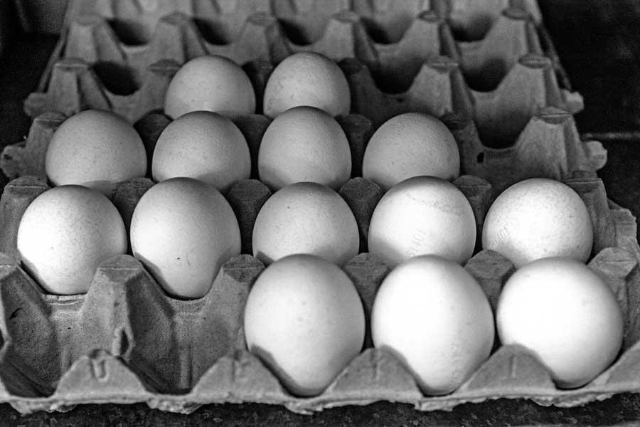 Eier für die Bäckerei Riesinger in Beerfelden