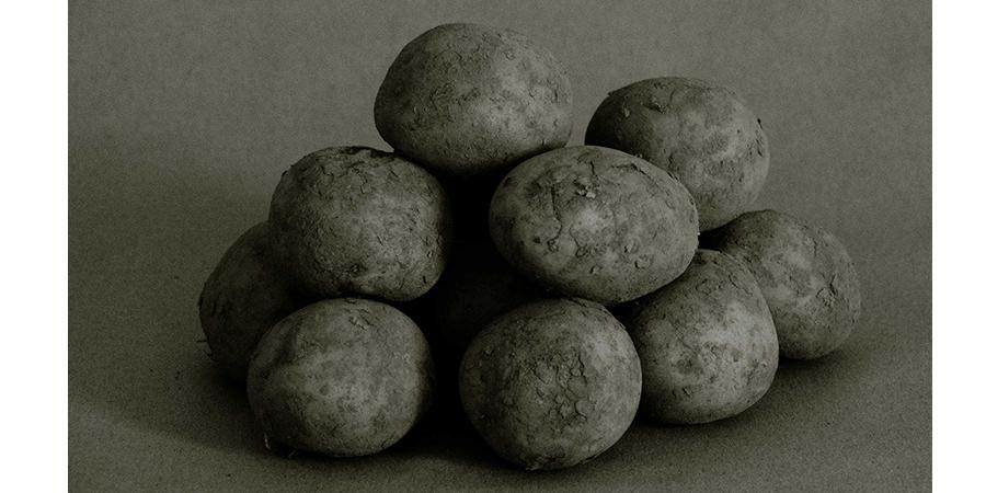 Odenwälder Kartoffelwochen