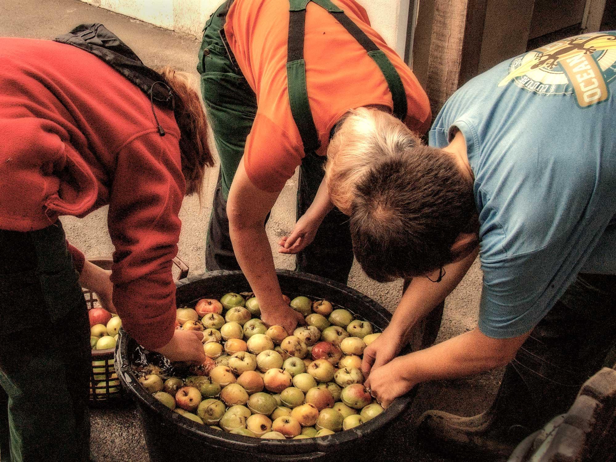 Weiße Hube, Keltern, Äpfel, soziale Landwirtschaft