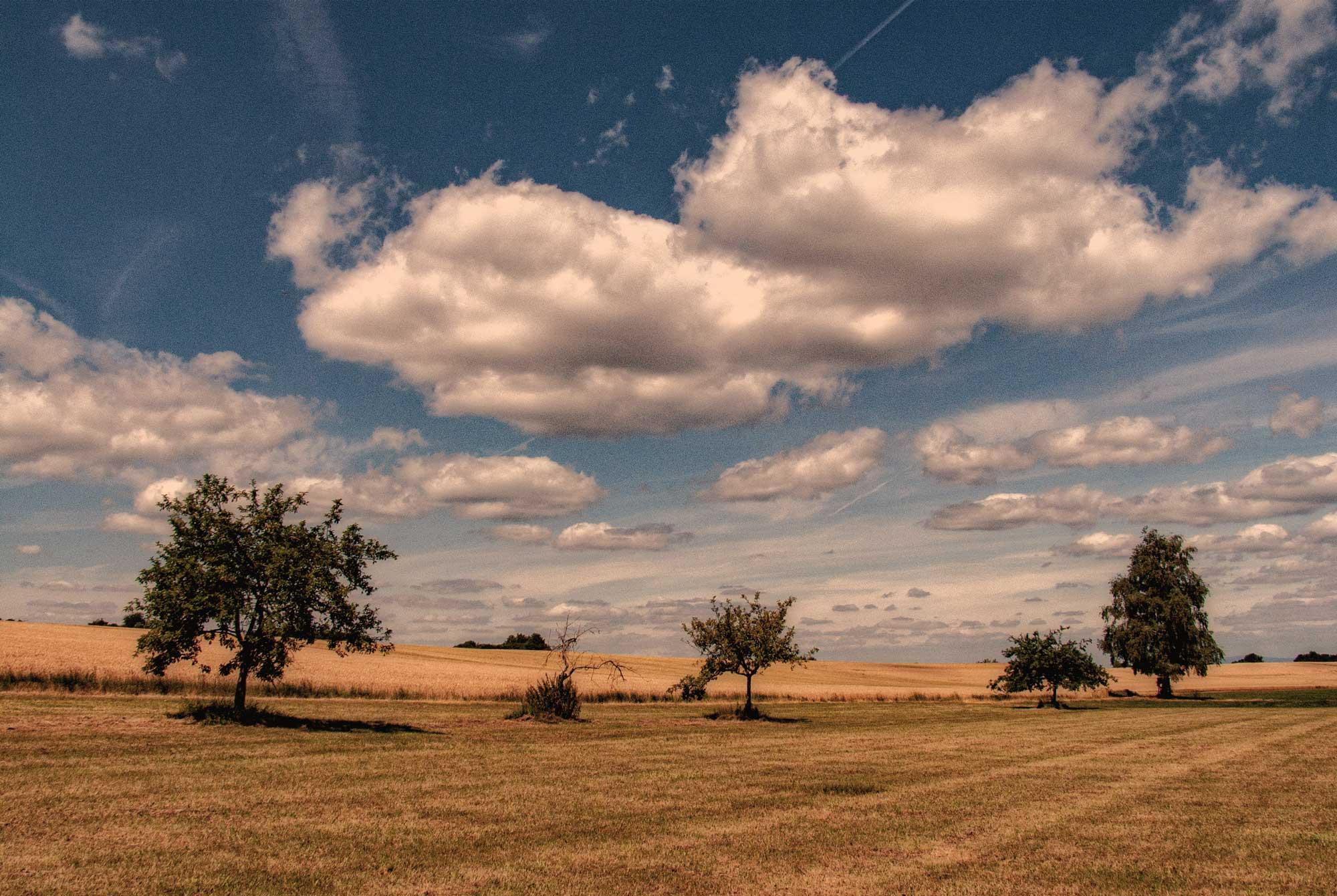Juli im nördlichen Odenwald