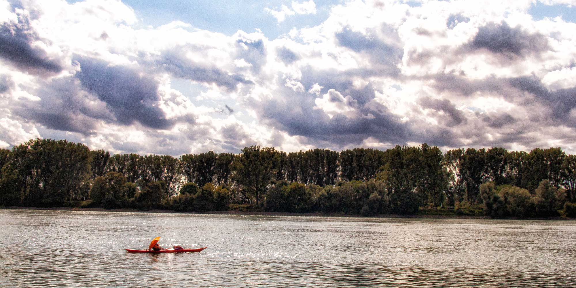 Der Rhein am Naturschutzgebiet Kühkopf-Knoblochsaue