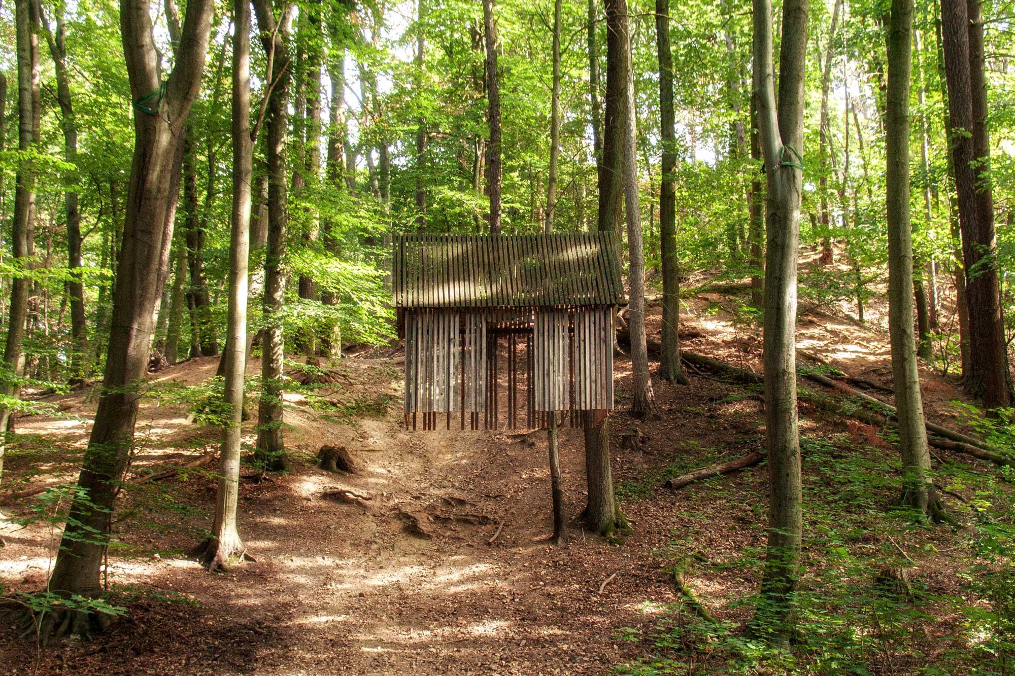 Darmstadt: Sieben-Hügel-Steig; Internationaler Waldkunstpfad