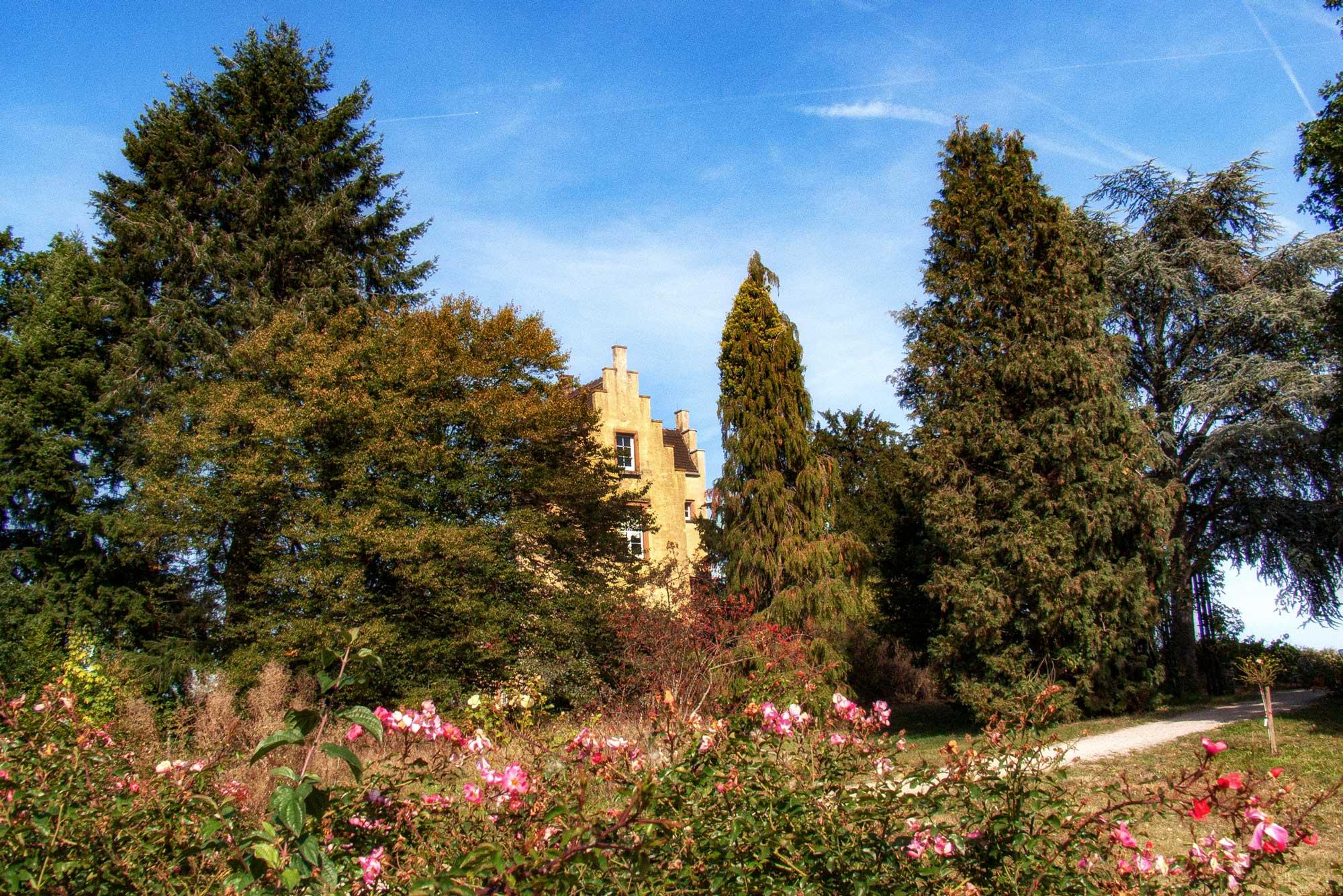 Darmstadt: Sieben-Hügel-Steig, Rosenhöhe