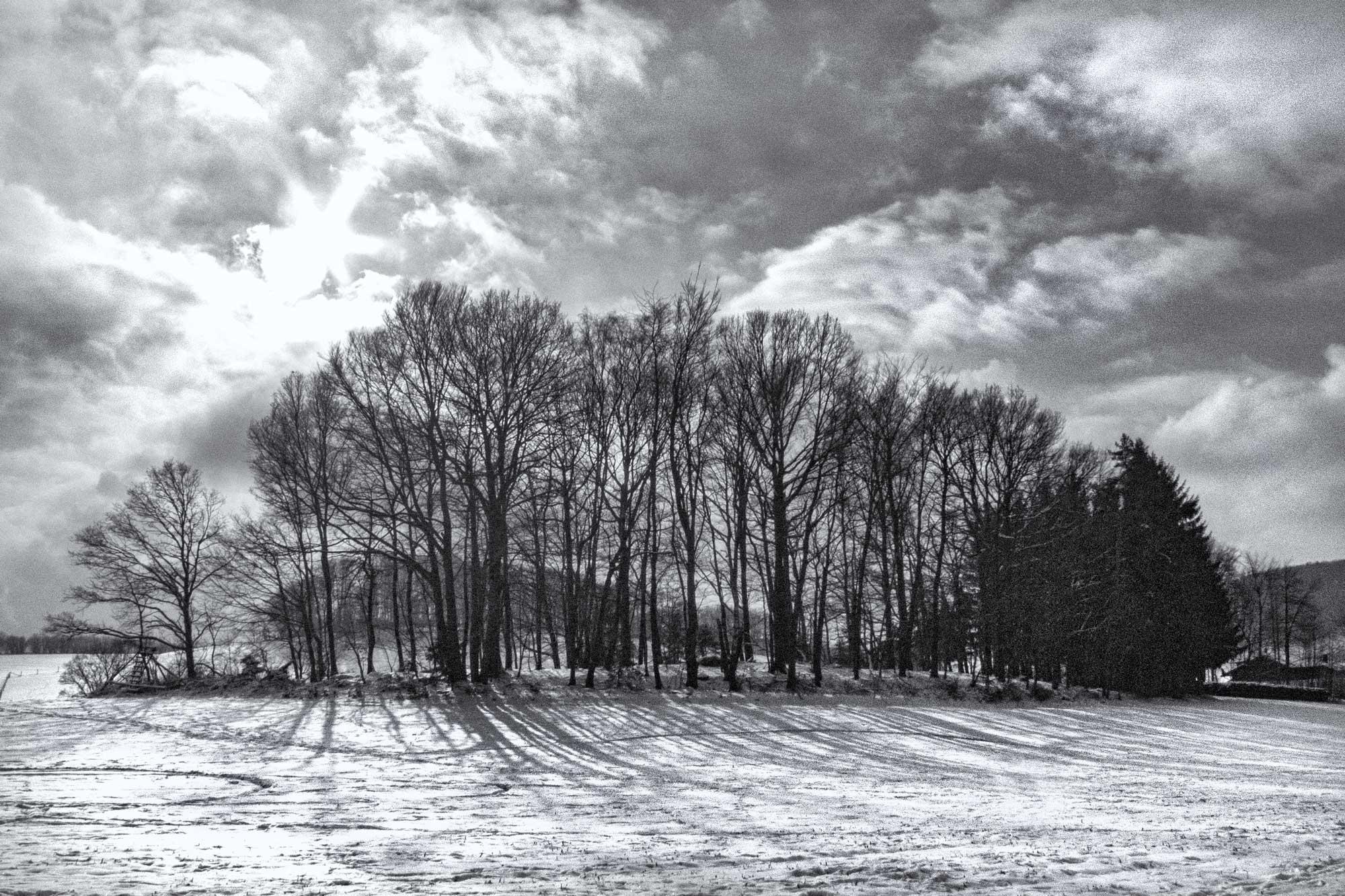 Januar bei Winterstein im Odenwald