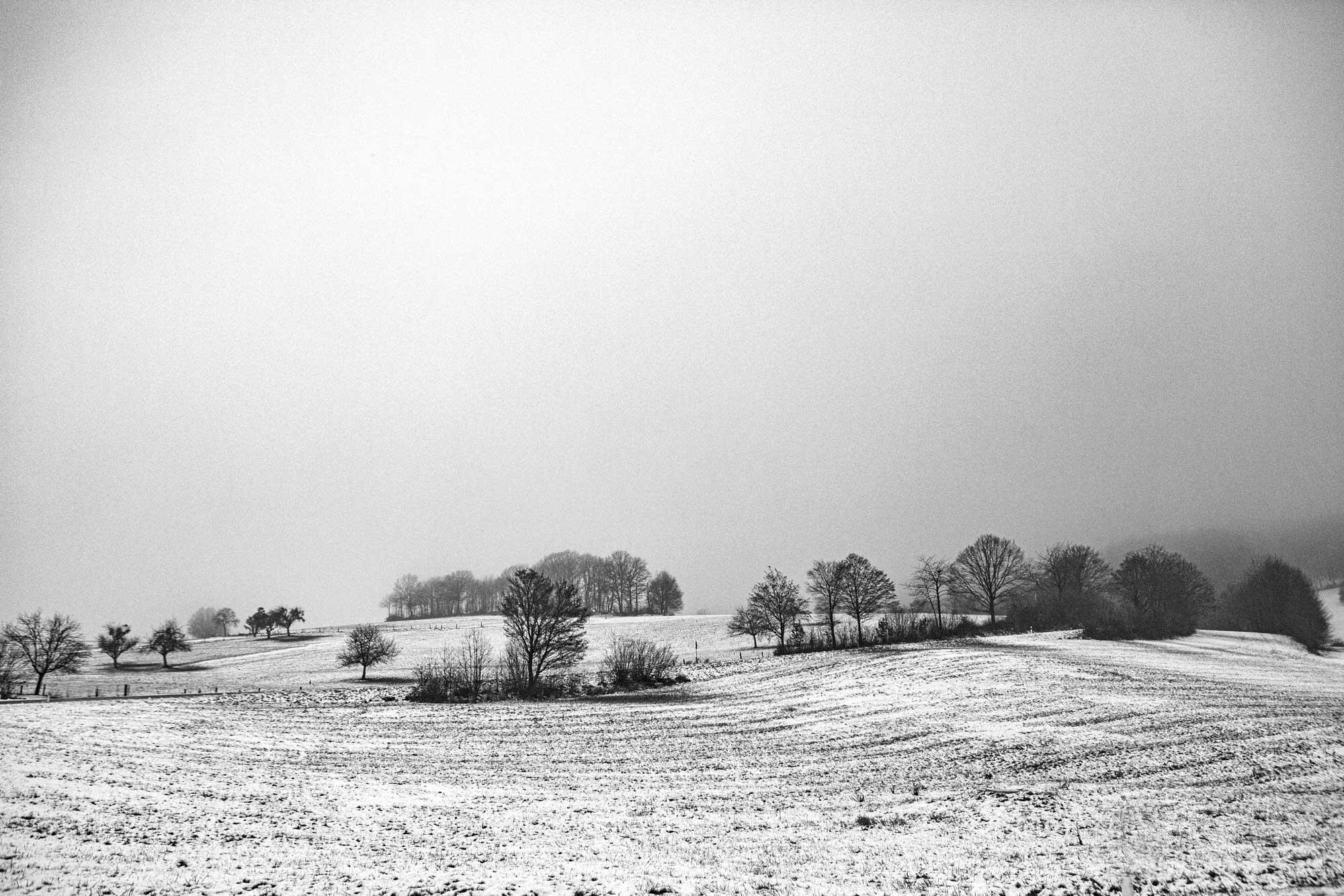 Dezember im Odenwald bei Laudenau