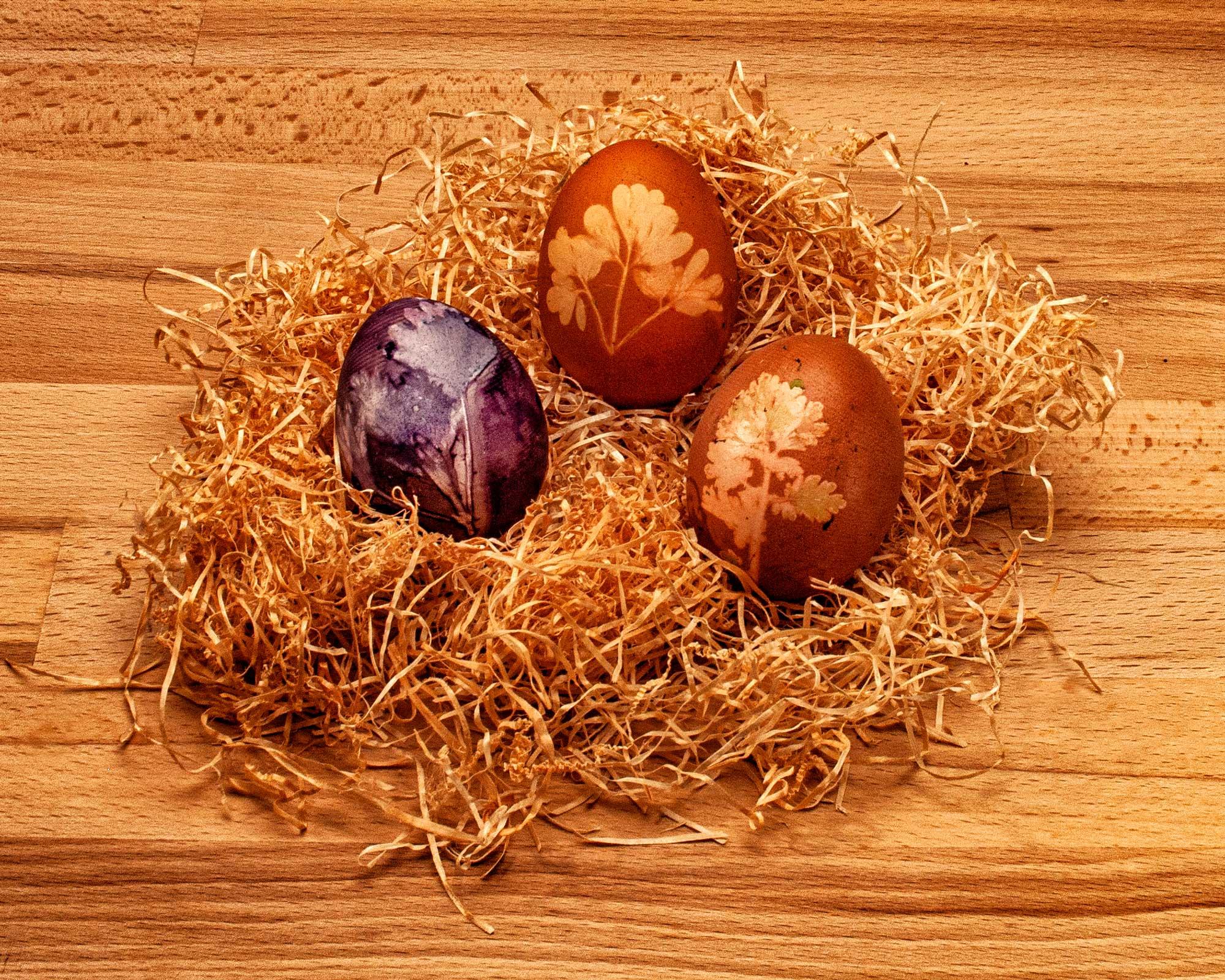 Ostereier Naturfarben aus Heidelbeeren und Zwiebelschalen