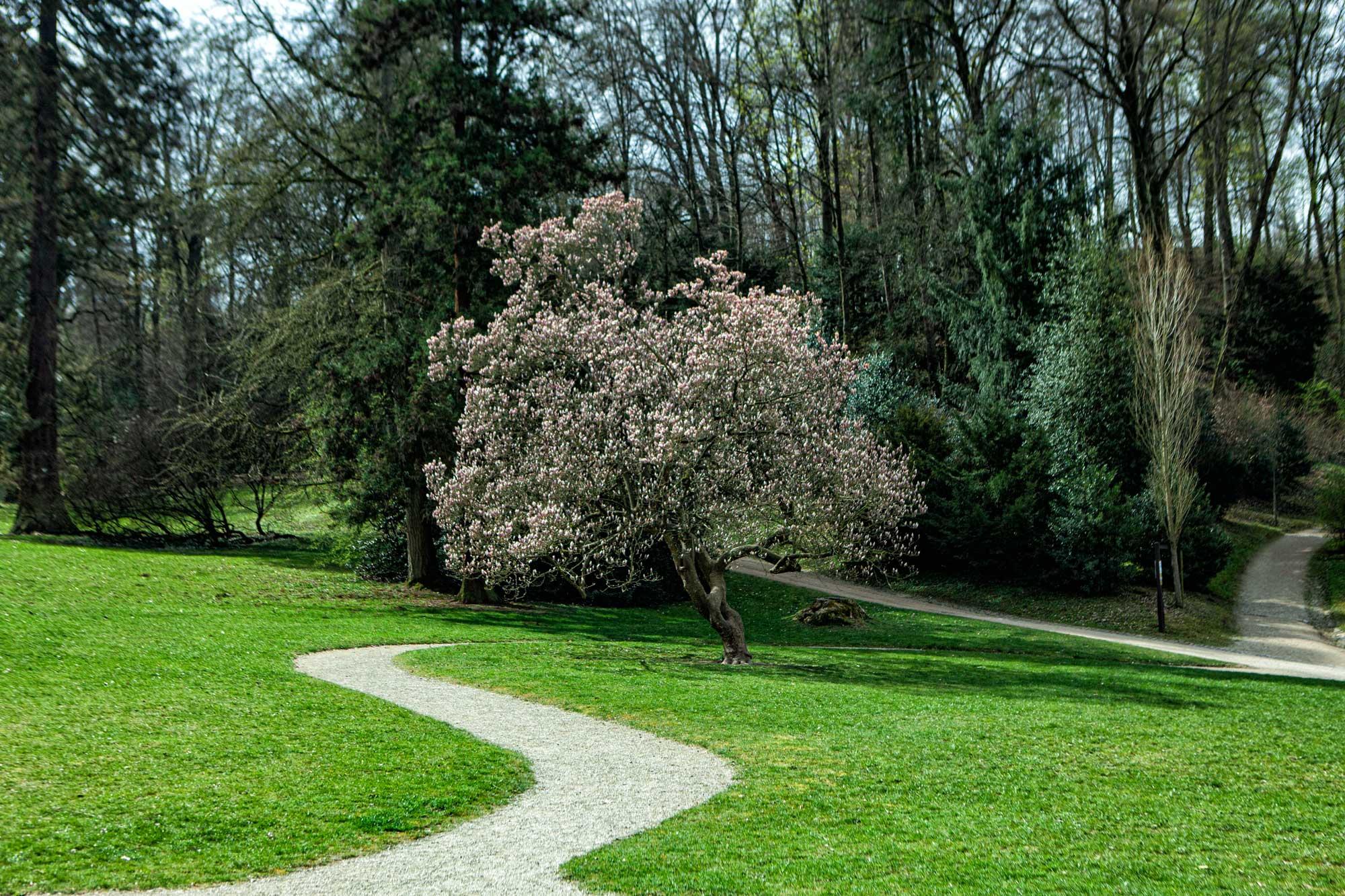 Das Fürstenlager in Bensheim-Auerbach im April